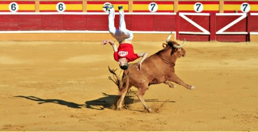 """While in Spain, I was lucky to catch a """"recortes"""" (bull leaping) competition.  The recortadores compete at dodging and ..."""