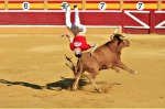 "While in Spain, I was lucky to catch a ""recortes"" (bull leaping) competition.  The recortadores compete at dodging and ..."
