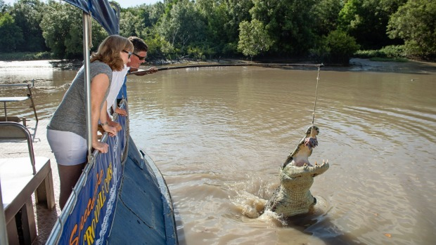 TRAVELLER SunSep3cover Title: Spectacular Jumping Crocodile Cruise, Adelaide River Mandatory credit: Shaana McNaught/Tourism NT