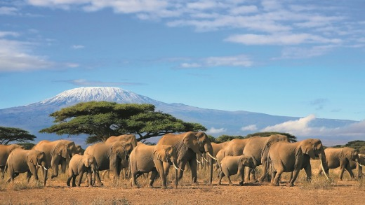 See South Africa's must visit attractions.