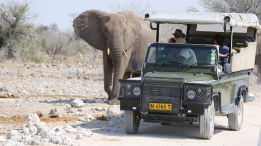 Behind the wheel of your own vehicle, tackling the experience on your own, is the best way to see Africa.