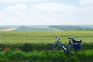 Cycling through Flanders Fields.