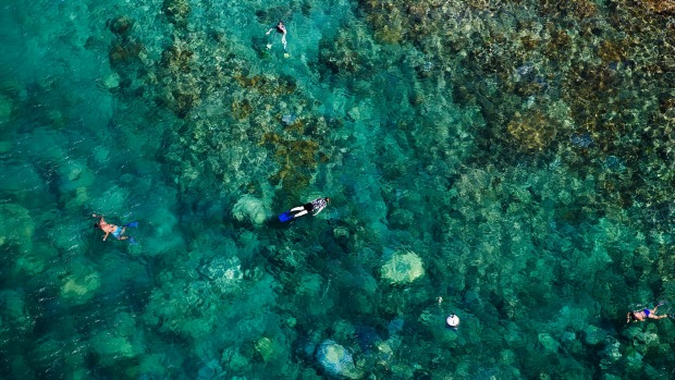 Snorkelling in New Caledonia.