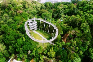 The treetop canopy walk at The Habitat, Penang Hill.