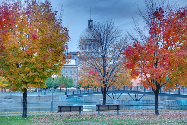 """MONTREAL, CANADA Montreal from mid-September to early November is a great city for what the Canadians call """"leaf ..."""