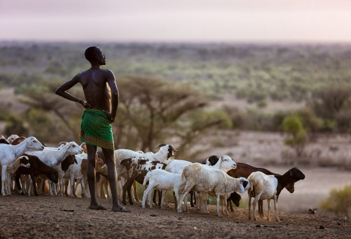 THE ARROGANT POSE OF A KARO WARRIOR WATCHING OVER HIS PRIZED GOAT HERD IN THE LATE AFTERNOON SUN . THIS IMAGE WAS TAKEN ...