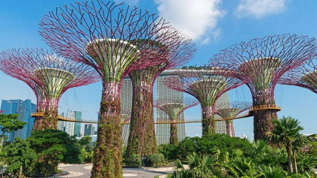 Supertrees Grove at Gardens by the Bay park is worth visiting on a stopover in Singapore.
