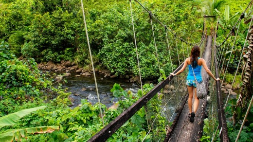 A suspension bridge over Wainibau stream, Lavena Coastal Walk, Taveuni Island, Fiji. Taveuni is the third largest island ...
