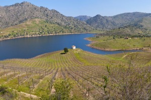 The vinyard-covered banks of the Sabor River in Portugal's Douro Valley
