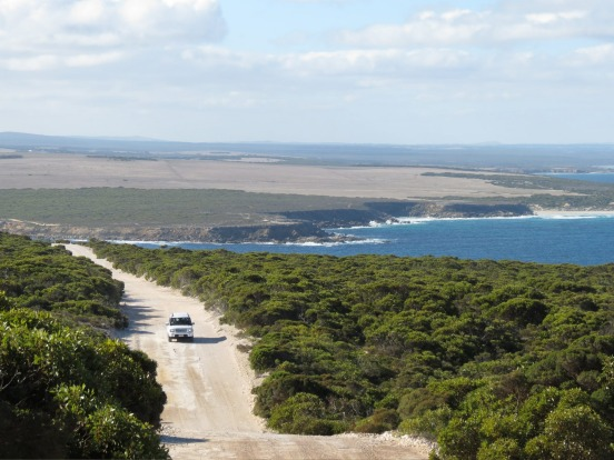 6. Eyre Peninsula, SA. When it comes to great seaside drives the one everyone thinks of is the Great Ocean Road, but if ...