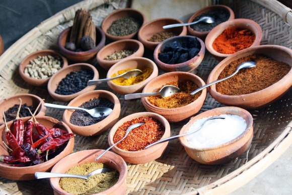 Learn about Sri Lankan culture on this 11-day tour.