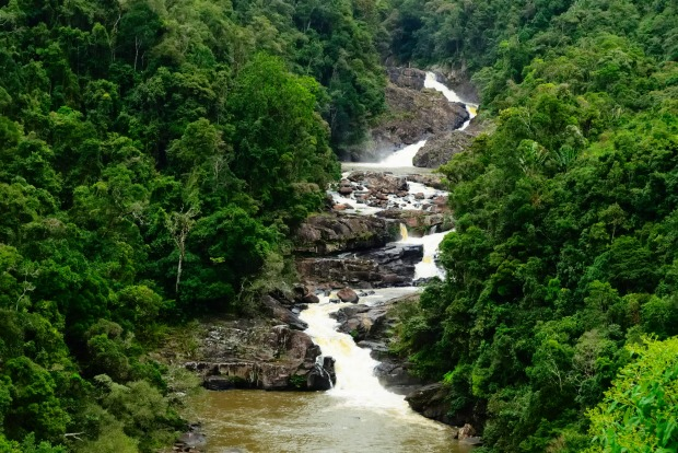 Waterfall crossing in the middle in Ranomafana National Park.
