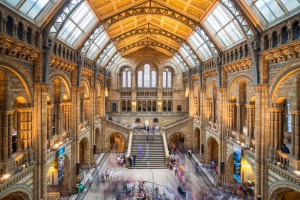 Who can resist?: The central hall of the Natural History Museum in London.