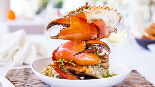 Mud crab is served with a bib and finger bowl at Noosa Beach House.