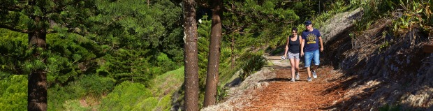 Norfolk Island National Park. Coastal walks, botanical gardens and a native bird app are just a few of this park's ...