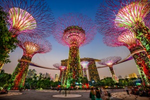 Supertrees at Gardens by the Bay.