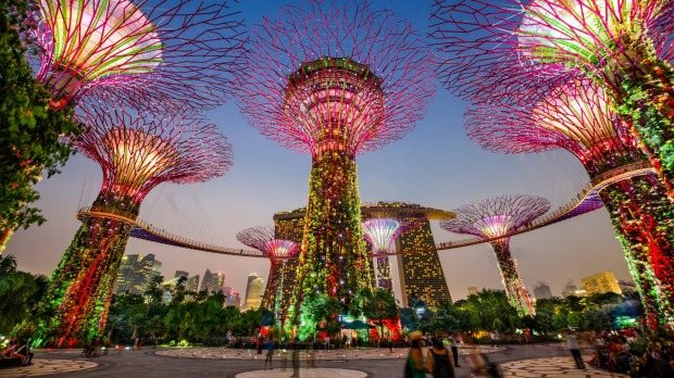 Singapore's Supertree Grove in the Gardens by the Bay.