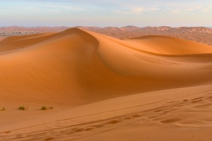 The dunes of the Sahara on the south side of the Atlas Mountains are well worth a visit.