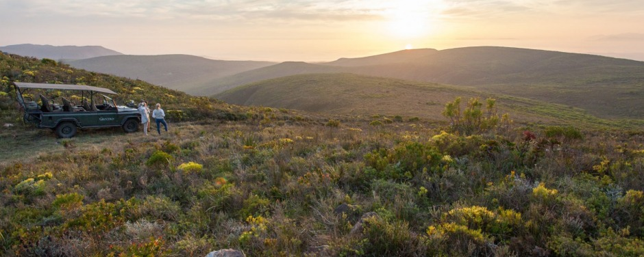 After the fire 69 new species of fynbos, long gone from the region, returned. Six of those discovered were new to ...