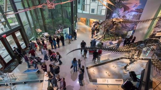 The Witte Museum.