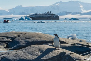 Ponant cruise to Antarctica.
