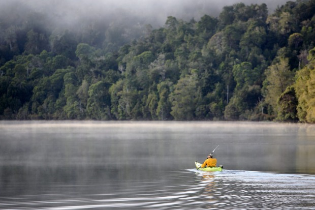 Blanketing much of Tasmania's northwest, the remote Tarkine wilderness is said to be the world's second-largest expanse ...