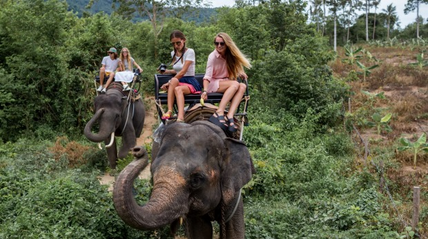 It's worth taking a closer look at any travel experiences involving animals, including the operators and the type of ...