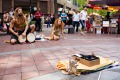 C76BDK travelers are busking in Singapore. Begpackers