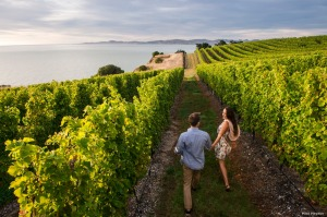 Marlborough is one of New Zealand's top wine regions.