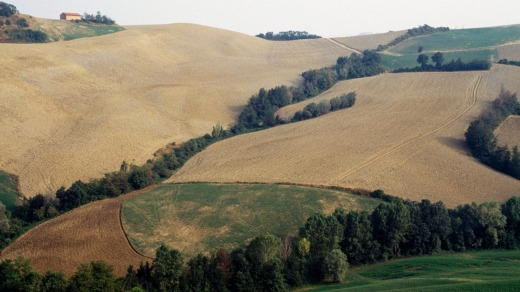 Hills and hamlets along the Via Francigena, Tuscany.