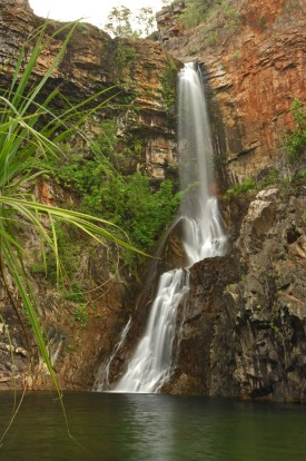 TJAYNERA FALLS (Sandy Creek)- Less crowded than other parts of Litchfield (partly because the access road requires a ...