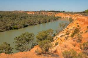 A clifftop view of the River Murray near Renmark.
