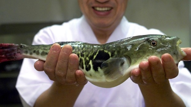Japanese chefs are hoping Olympic tourists will help revitalise interest in eating the potentially deadly fugu, or ...