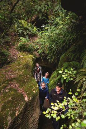 2. TE ANAU GLOWWORM CAVES This experience begins with a boat ride across New Zealand's second biggest lake, Te Anau, in ...