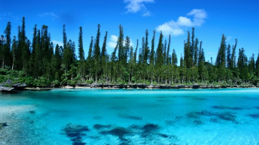Pines Island at New Caledonia.