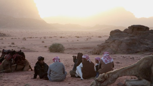 Bedouin guides and their camels taking a quiet moment at sunset, Wadi Rum.