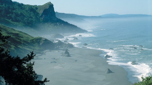 The Redwood Coast: Where the redwoods meets the California Coast.