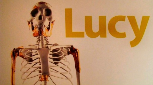 "The 3.2 million-year-old skeleton dubbed ""Lucy""."