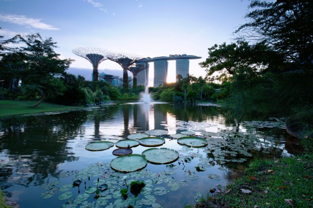 Gardens by the Bay is an award winning horticultural destination and offers visitors a breath-taking views of the Marina ...
