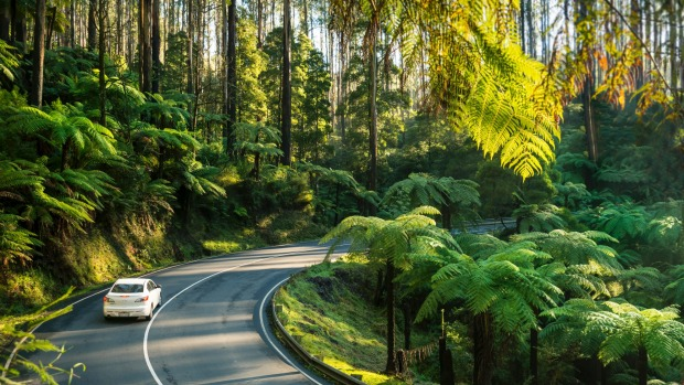 Marysville, Victoria: Why tourists are returning