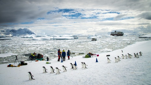 Icebergs and animals provide plenty of photo opportunities during a trip on MS Midnatsol in Antarctica.