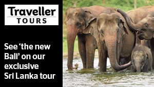 Traveller Article Promo slot  Sri Lanka Tours