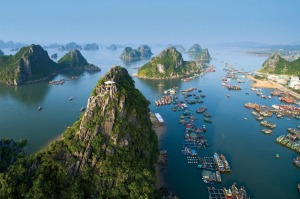 Cruise Halong Bay, Vietnam with Coral Expeditions.