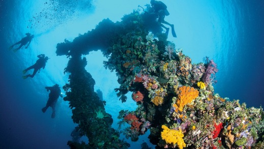 Scuba-diving in Indonesia with Lindblad Expeditions.