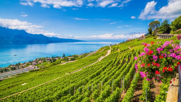WINEMAKERS FESTIVAL, VEVEY, SWITZERLAND. Once a generation (about every 21 years). Held in a giant outdoor theatre, the ...