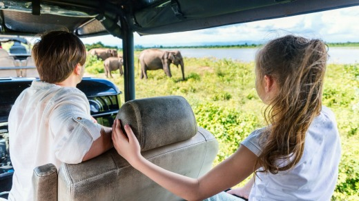 Watching elephants at Udawalawe National Park in Sri Lanka.