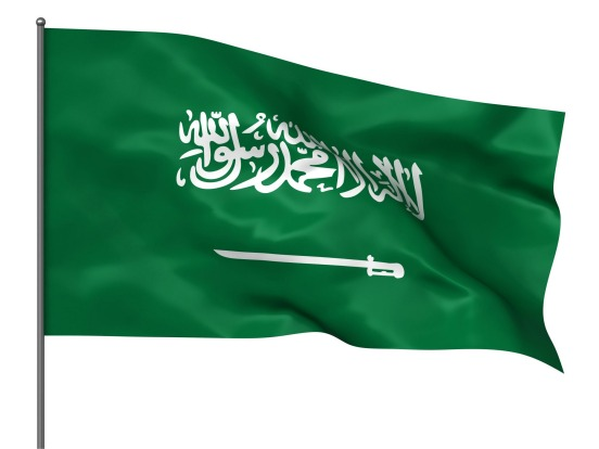 Saudi Arabia: There should be no place for writing on flags – it defeats the whole point of symbolism. And the Saudi ...