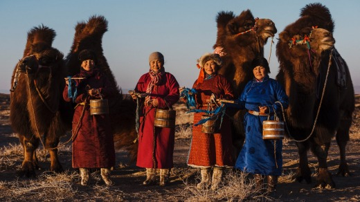 Entry to Mongolia will cost you $230.