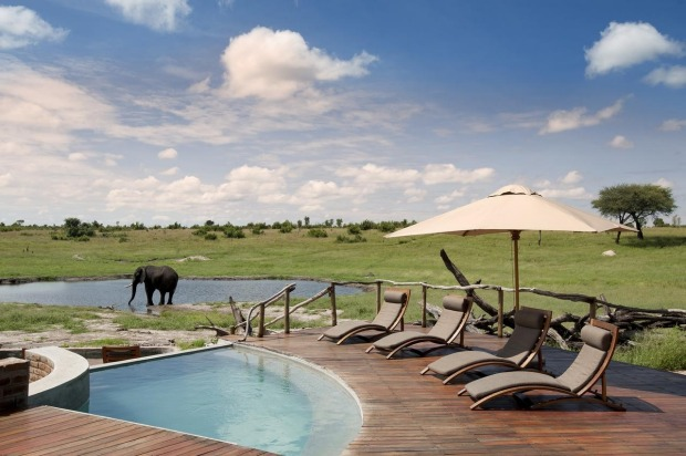 Somalisa Camp, Zimbabwe: This isn't the most luxurious pool you've ever seen. It's not the biggest, it's not the best ...