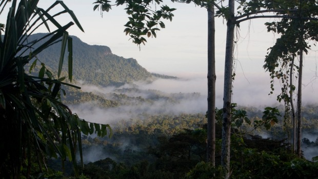The Meakambut area in Papua New Guinea: The further into the PNG jungle you go, the quieter and gentler it becomes.